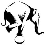 Black and white linear paint draw elephant illustration Stock Photography