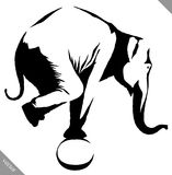 Black and white linear paint draw elephant illustration Royalty Free Stock Photo