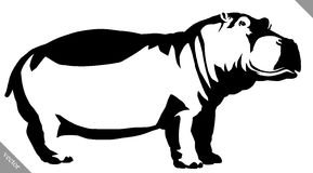 Black and white linear paint draw Hippo vector illustration Stock Photos
