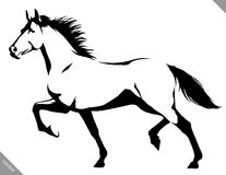 Black and white linear paint draw horse vector illustration Royalty Free Stock Photo