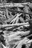 Black and white logs. Log jam at the outlet of Mills Lake in Rocky Mountain National Park Stock Photo