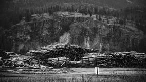 Black and White Lumber Mill royalty free stock image