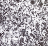 Black and White Marble Texture in Bathroom Royalty Free Stock Image
