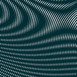 Black and white moire lines, striped  psychedelic background. Stock Image