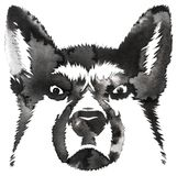 Black and white monochrome painting with water and ink draw dog illustration Royalty Free Stock Images