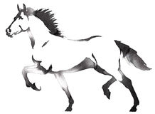 Black and white monochrome painting with water and ink draw horse illustration Stock Photography