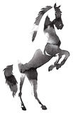 Black and white monochrome painting with water and ink draw horse illustration Royalty Free Stock Photography