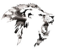 Black and white monochrome painting with water and ink draw lion illustration Royalty Free Stock Photography