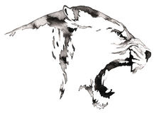 Black and white monochrome painting with water and ink draw lion illustration Stock Photos