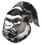 Black and white monochrome painting with water and ink draw monkey illustration Royalty Free Stock Image