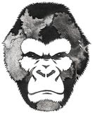 Black and white monochrome painting with water and ink draw monkey illustration Stock Photography