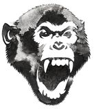 Black and white monochrome painting with water and ink draw monkey illustration Stock Photo
