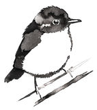 Black and white monochrome painting with water and ink draw Sparrow bird illustration Royalty Free Stock Photo