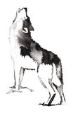 Black and white monochrome painting with water and ink draw wolf illustration Royalty Free Stock Photo