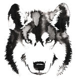 Black and white monochrome painting with water and ink draw wolf illustration Royalty Free Stock Photos