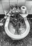 Black And White, Monochrome Photography, Plumbing Fixture, Monochrome