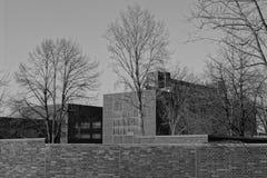 Black And White, Monochrome Photography, Tree, Sky