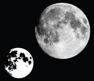 Black and white moon vector. Realistic moon vector, design elements Stock Images