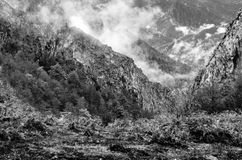 Autumn mountain landscape. Black and white mountain landscape in Asturias, northern Spain Stock Image