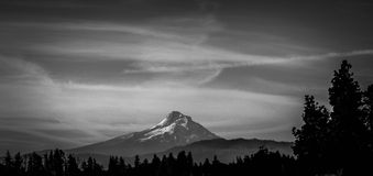 Black and White Mt. Hood Royalty Free Stock Image