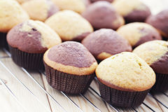Black and white muffins Stock Photos
