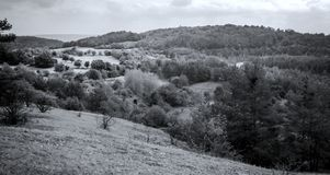 Black and white nature panorama royalty free stock photos
