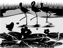 Black and white nature vector. Composition Royalty Free Stock Images