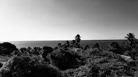 Black and white near Papeete tahiti royalty free stock images