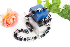 Black and white necklace Royalty Free Stock Image