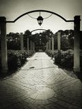 New Orleans pathway. Black and white New Orleans pathway stock images