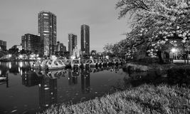 Black and white night scene of the lake and swan boats at Ueno Park in Tokyo, Japan Royalty Free Stock Photo