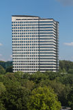 Black and White Office Building Rising from Trees Royalty Free Stock Photo