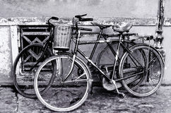 Black and white old bicycle Royalty Free Stock Photography