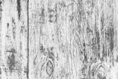 Black and white old wooden surfase. Contrast wood background. Contrast relief surface. Heterogeneous drawing textures. Wood fibers are arranged vertically stock images