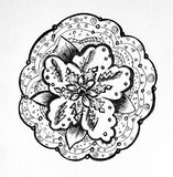 Black and white ornamental flower on a white background. Black and white drawing. A flower filled with ornament. A flower on a white background. Author`s drawing Royalty Free Stock Photography