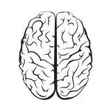 Black and white outline brain mark from top view. Stock Photography