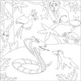 A black and white outline image of jungle animals cobra, mongoose, boa, a parrot, a monkey, chameleon. royalty free illustration