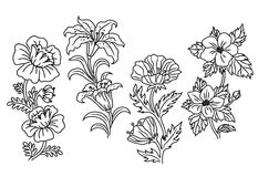 Black and white outline summer flowers Stock Photo