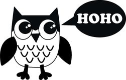 A black white owl Stock Images