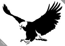 Black and white paint draw eagle bird vector illustration Stock Photography