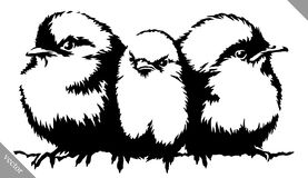 Black and white paint draw Sparrow bird vector illustration Stock Photography