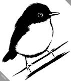 Black and white paint draw sparrow bird vector illustration. Black and white linear paint draw sparrow bird vector illustration Stock Photos
