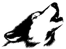 Black and white paint draw wolf illustration Royalty Free Stock Images
