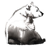 Black and white painting with water and ink draw bear illustration Stock Photography