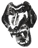 Black and white monochrome painting with water and ink draw monkey illustration Royalty Free Stock Photography