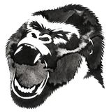 Black and white monochrome painting with water and ink draw monkey illustration Royalty Free Stock Images