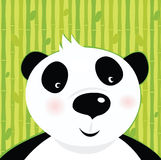 Black and white panda bear Stock Photography