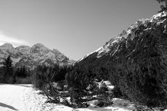 Black and white panorama of winter mountains. Tatra Poland stock images