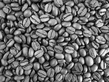 Black and white pattern of coffee beans Royalty Free Stock Photos