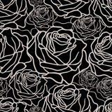Black and white pattern with roses Stock Image